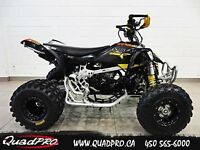 2009 Can-Am DS 450X XC