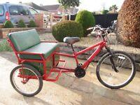 electric tricycle /rickshaw