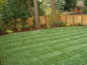 Best sod installation and landscaping services London Ontario image 6
