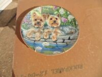 Danbury Mint Yorkshire Terrier Collectors Plate in as New Condition (Spring Time Cuties)