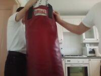 professional red leather punch bag.