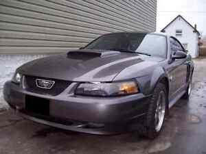 2004 Ford Mustang GT / Swap - Trade London Ontario image 1