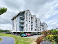 Im Looking for a flat to live in, in Copper Quarter Swansea below £600 immediately!!