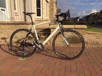 Specialized Roubaix Expert bike