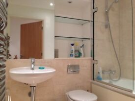 ONE BEDROOM IN A LOVELY TWO BED FLAT (FURNISHED)