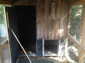 Large Dog Kennel with run.