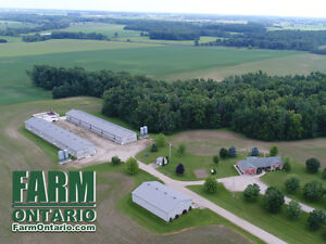 Ongoing Broiler Farm in Palmerston w Driveshed, Solar & 5 Bdrm