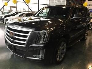 2017 Cadillac Escalade Luxury AWD (BRAND NEW) CLEARANCE