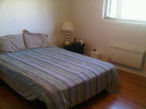 ROOMS FOR RENT (Roommate / temporary accommodation)