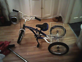 kids trike for sale
