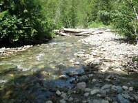 4+Acres close to recreational lakes w/septic