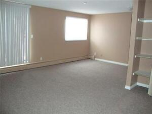 NICE WEST EDMONTON BACHELOR UNIT AVAILABLE!!!