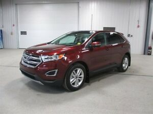 2016 Ford Edge SEL Moose Jaw Regina Area image 3