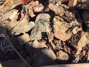 ROCKS FOR PAVING AROUND THE HOUSE Strathfield Strathfield Area Preview