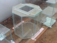New 50 Gallon Octagon Terrarium with Screen Lid