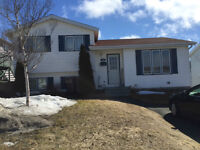 TWO APARTMENT IN MT. PEARL