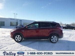 READY FOR A NEW HOME! 2015 Ford Escape SE 4WD COMPACT SUV.