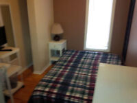 Room Furnished Bed/Sitting near Bank St. and Walkley Rd.