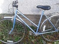 Sorrento Falcon Ladies Bicycle. Recently serviced.