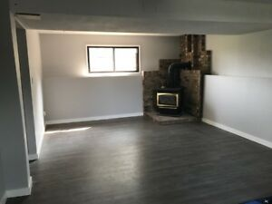Large spacious basement suite ready to rent September 1st