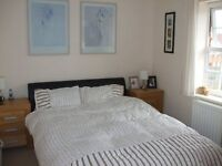Large Double and Single Rooms available in a very clean modern house close to Business Park