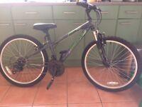 Halfords Apollo Switch Junior Bike