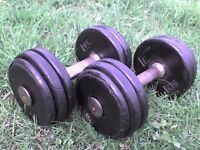55 lb's 25 kg Metal Dumbbell barbell Weights in Rubber - Heathrow