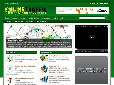 Online Social Traffic Tips Wordpress Blog Website For Sale
