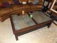Large Tortoise Table - Coffee Table