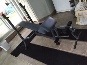 IMPEX COMPETITOR BENCH PRESS