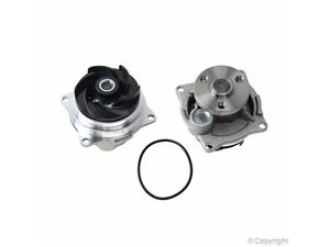 03 Ford Focus water pump