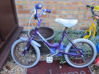 Girl child Raleigh bike Not-in-use, need some work clean