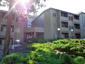 APARTMENT CLOSE TO TRU AND SHOPPING