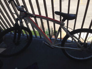 Diamond back dirt Jumper For Sale!! 8/10 Condition London Ontario image 2