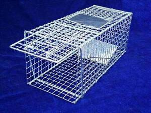 TRAP Humane Possum Cat rat Rabbit Hare Bird Fox Animal wire cage Athelstone Campbelltown Area Preview