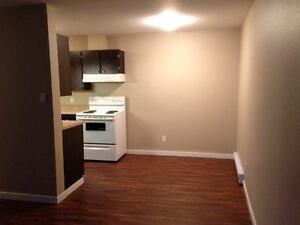 2 bedroom newly renovated basement apartment