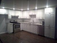 Home Renovation Services - FREE ESTIMATE! (647) 550 - 7252
