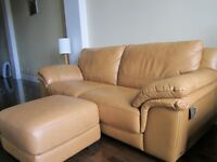 Leather couch,luggage,wood bench,clothes,Plant,Luggage,more