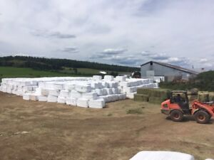Wrapped Hay & Silage