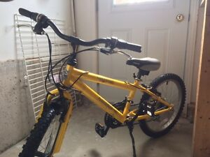 """Vélo Norco pour enfant cadre 11"""" roue 20"""""""