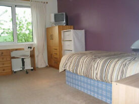 Spacious Room in Cherry Hinton