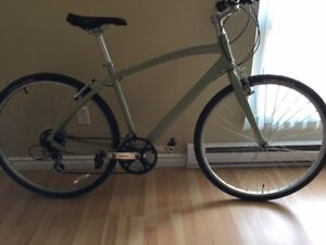 Specilaized Globe Commuter Bicycle