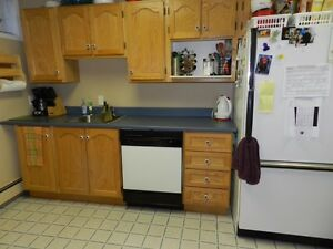 EVERYTHING INCLUDED!! Spacious Apartment in Outer Cove St. John's Newfoundland image 8