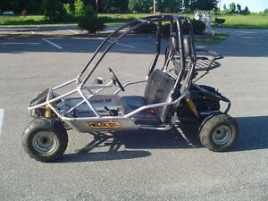 Two seater dune buggy