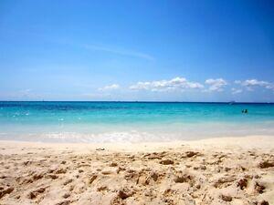 Offrez-vous ce que vous méritez, des vacances au soleil...!