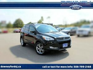 2013 Ford Escape SEL LEATHER HEATED SEATS BACKUP CAMERA