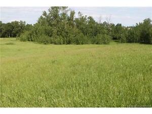 LAND FOR SALE: 430068 RR 252 #122