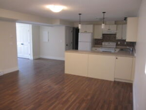 SPACIOUS, CLEAN, SUITE IN NEW SUBDIVISION BELOW SILVER STAR