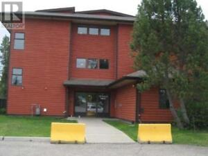 305 - 108 SPRUCE AVE TUMBLER RIDGE, British Columbia