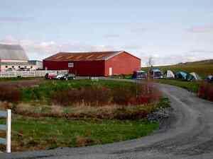 NEW PRICE!  HORSE FARM APPROX. 25 MIN. TO HALIFAX,, NS